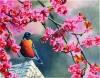 Картина бісером Весняна пора